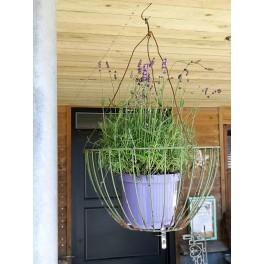 Gammel Fransk Jardiniere [H24xØ43cm] Hængeampel