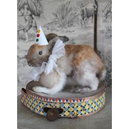 Kanin (udstoppet) Klovn